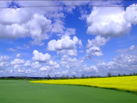 Track right across green fields and rape fields UK