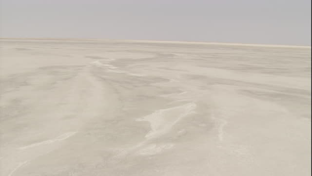 Tracking over a barren salt pan, Botswana. Available in HD.