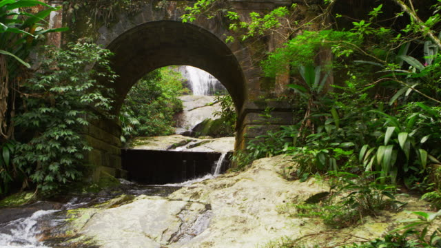 Tracking shot of a scenic jungle stream flowing underneath an arched bridge.