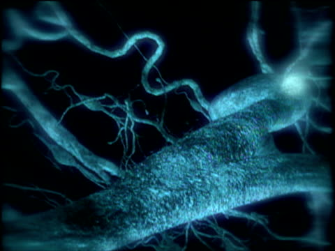 Tracking through graphic of neurotransmitters sending information from one neuron to another