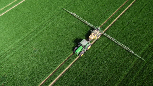 AERIAL: Tractor Applying Fertilizer to Corn Field