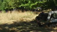 Tractor carries debris in overgrown field