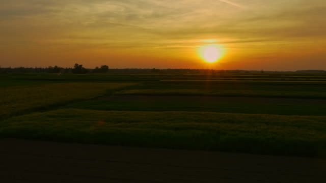 AERIAL Tractor cultivating the field at dusk