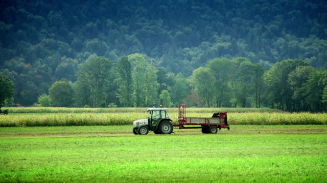HD - Tractor Fertilizing Field With Manure