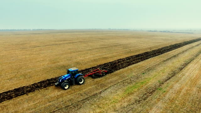 Tractor harrowing field and flock of birds whirling over ground