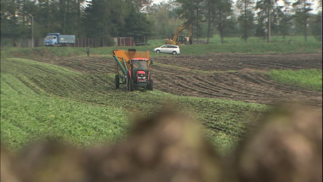 A tractor harvests beets past a pile of harvested beets in Hokkaido, Japan.