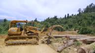 WS TS Tractor loading truck with felled logs / Tawau, Sabah, Malaysia