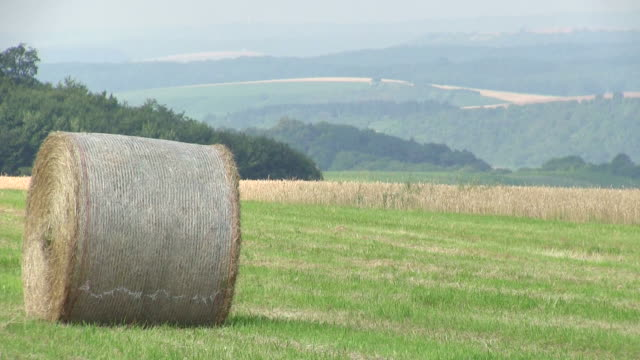 MS Tractor picking up bales of straw from field / Saarburg, Rhineland Palatinate, Germany