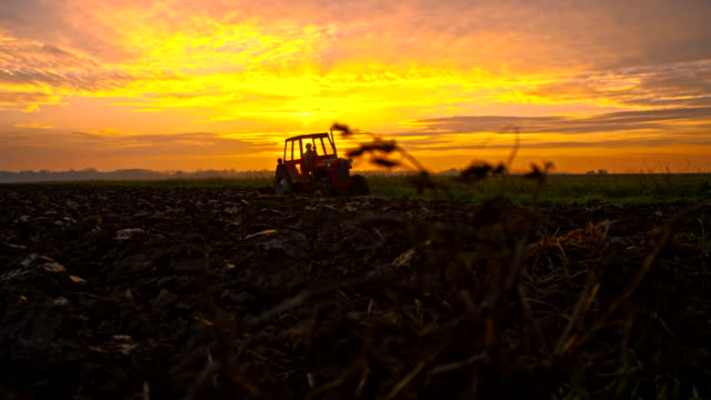 WA Tractor Plowing The Field