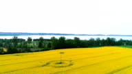 Tractor spray fertilize rapeseed field with insecticide herbicide chemicals.