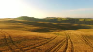 AERIAL Tractor tracks in wheat field