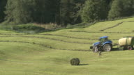 MS Tractor turning over cut hay / Appenzell, Appenzell Innerhoden, Switzerland