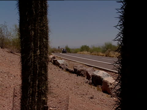 Traffic drives along desert road with two cacti in foreground California