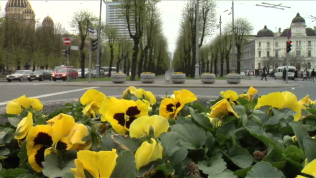 Traffic in Riga.