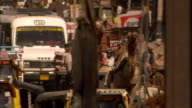 Traffic passes along busy street Rajasthan Available in HD.