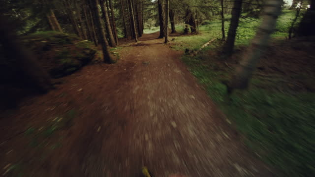 POV Trail running in the forest: off-road run