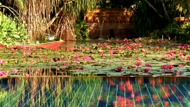 Tranquil Pool