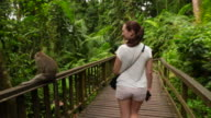 Traveler girl walking inside rainforest with monkeys enjoying vacations during travel in the Bali island.