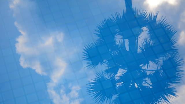 Baum Schatten am Wasser und cloud
