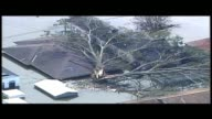 WGNO Tree Causes Damage During Hurricane Katrina In New Orleans on August 29 2005 in New Orleans Louisiana