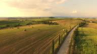 AERIAL Treelined road in Tuscany