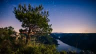 Trees under starry sky, Krka National Park, Croatia