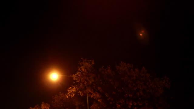 Treetops streetlights street sign dark sky BG