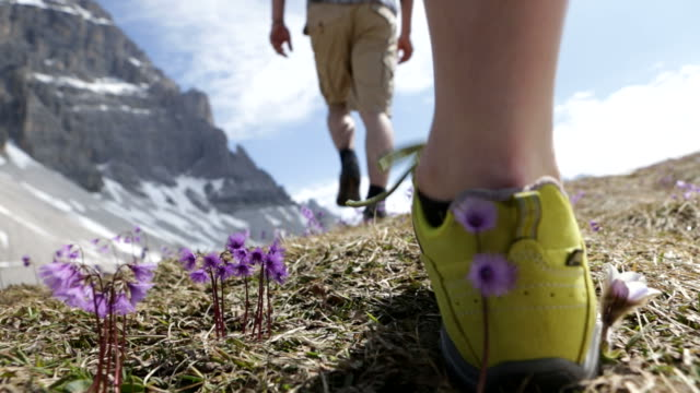 Trekking Dolomiti