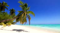 Tropical beach at a deserted pacific island