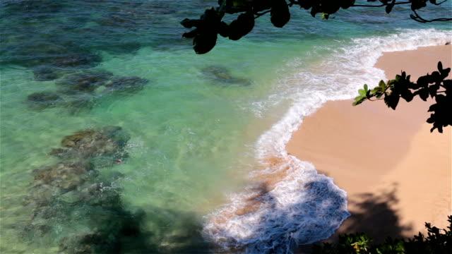 Tropical Beach Landscape, Hawaii