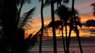 Tropical Beach Sunset in Maui, Hawaii