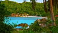 Tropical beach through palm trees