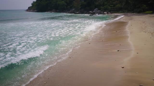 Tropical beach waves aerial