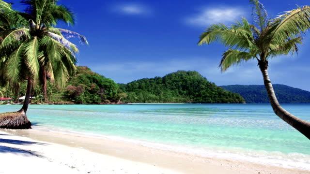 Tropisch strand met kokospalmen bomen