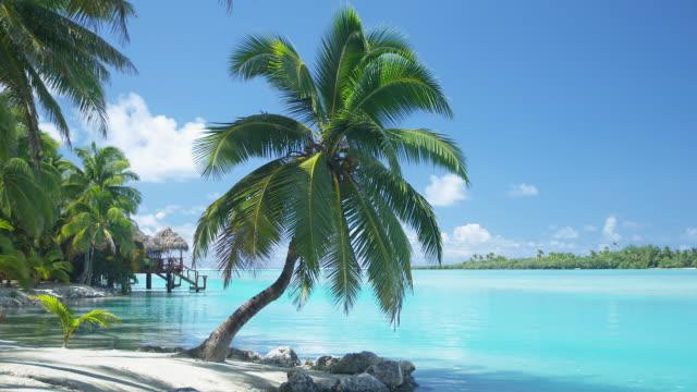 WS, Tropical beach with overwater bungalow in distance, Aitutaki Lagoon, Aitutaki, Cook Islands