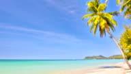 Tropischer Urlaub beach