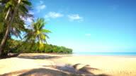 Tropical island and palm beach lagoon