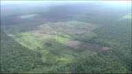 Tropical rainforest in River Amazon catchment area    Wide Shot  Zoom In  Farmland on cleared ground  Aerial Shot