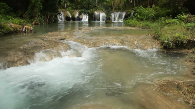 Tropical Water Flowing