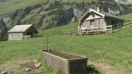 MS Trough in mountains with hut pasture / Appenzell, Appenzell Innerhoden, Switzerland