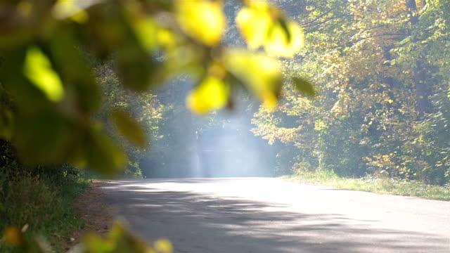 LKW-fahren auf einer Straße in den herbstlichen Wald.