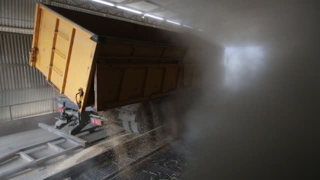 A truck unloads wheat grain inside the storage facility during the summer wheat harvest on a farm operated by ASB Management Co in Novoalexandrovsk...