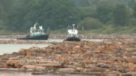 """Schleppdampfern und Holzstämmen in sogenannten """"Log Booms"""""""