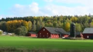 Tumba Sweden rural farming dairy with barn and home in green fields in Fall colors