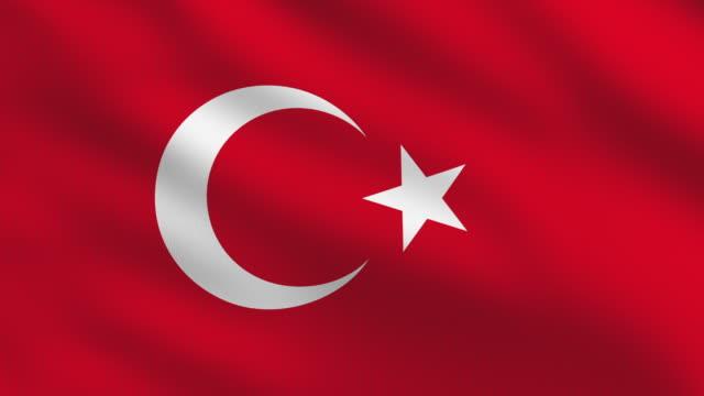 Image result for turkey flag
