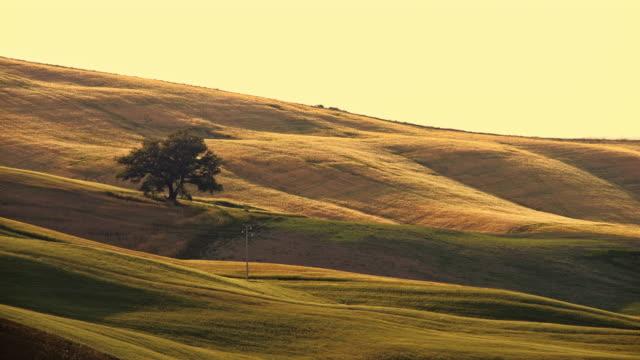 SLO MO Tuscan countryside