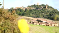 Tuscany italy landscape agriculture in the morning