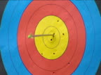 Two arrows hit archery target UK