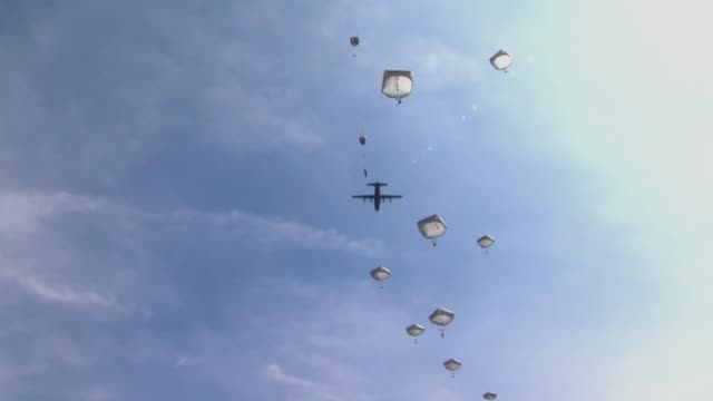 Two brothers paratroopers from opposite sides of the globe jumped together during a NATO exercise for the first time
