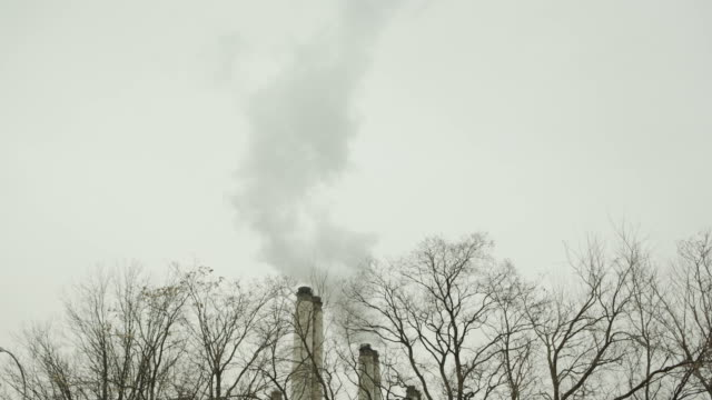Two chimney's with smoke factory with trees Environment wide shot
